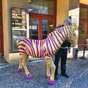 The ZEBRA zebra