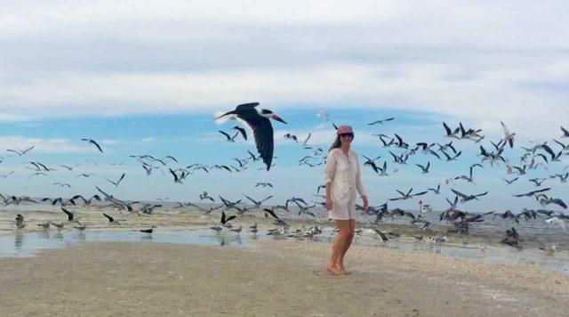 woman on sandbar among gulls