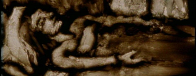 Crop of a still from Lynn Tomlinson's animation